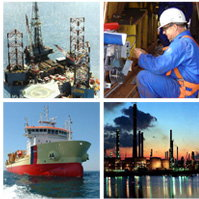 Dolphin Industrial Services
